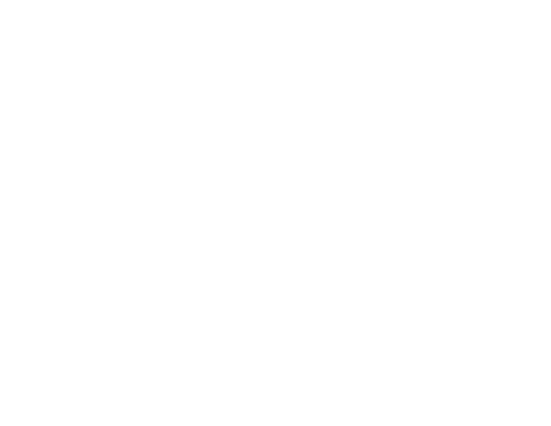Chinor Labs